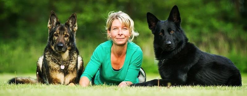 Hundeschule Sporthundshop